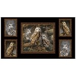 Nocturnal Wonders Barred Owls Panel - Black - 24'' x 44''