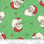 Swell Christmas Santa - Green