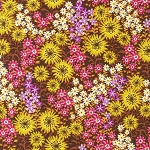 Just Dandy - Petunia - Flowers on Brown