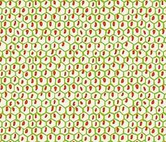 Carmen - Honeycomb Pattern - Green with Orange