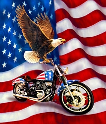 Liberty Ride Eagle/Motorcycle Digitally Printed Panel - 36'' x 42''