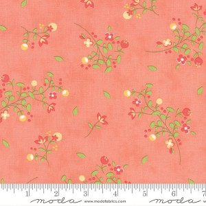 Sundrops Floral Blossoms - Coral