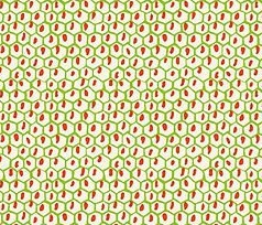 Carmen Honeycomb - Green w/Orange - by Anna Griffin Fabrics Yardage